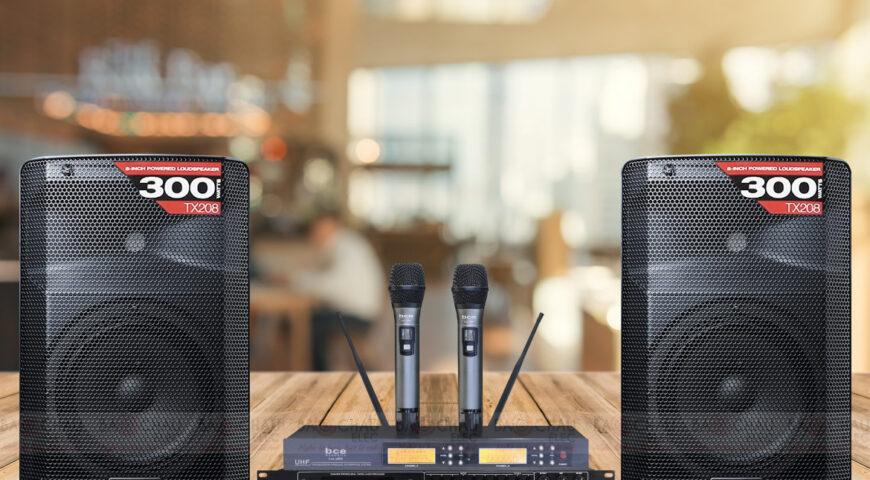 Dàn karaoke gia đình dưới 10 triệu thì có nên mua?